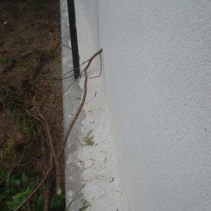 image du mur n'étant pas ajusté en limite de propriété