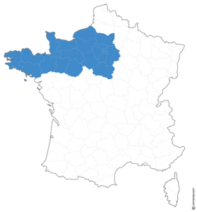ouest-expertise-nos-interventions-grand-ouest-france-expertise-immobilier-batiment
